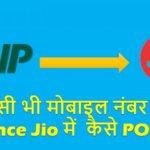 Reliance Jio SIM Free me Kaise Paye Bina Number Change Kiye | MNP
