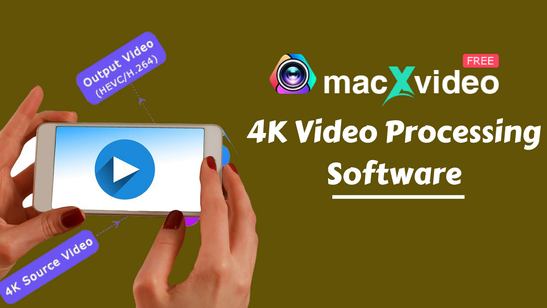 4K Video Processing Software