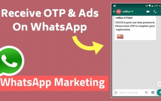 WhatsApp Par OTP(One-Time-Password) Send Kaise Kare? | WhatsApp API Integration