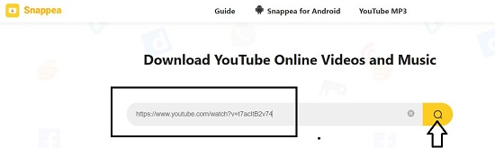 sneapa video downloader
