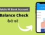 Check bank balance on mobile